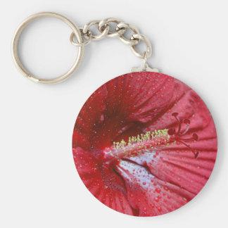 Hibisco rojo con las gotas de agua llavero redondo tipo pin