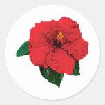 Hibisco rojo etiquetas