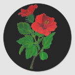 Hibisco rojo etiquetas redondas
