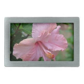 Hibisco rosado bonito hebilla de cinturon rectangular