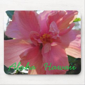 Hibisco rosado en Hawaii Alfombrillas De Ratón