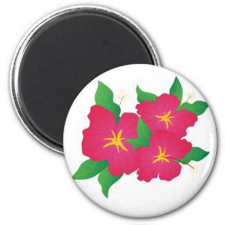 Hibisco rosado imán redondo 5 cm