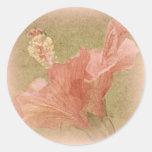 Hibisco rosado pegatina redonda