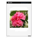 Hibisco rosado pegatina skin para iPad 3