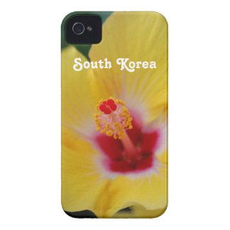 Hibisco surcoreano iPhone 4 cobertura