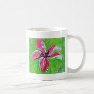 hibisco taza