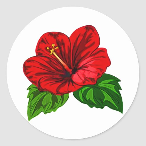 Hibisco tropical rojo brillante pegatina redonda
