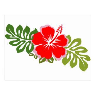 Hibisco y hojas rojos tarjetas postales
