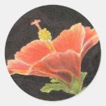 Hibiscos Etiqueta Redonda