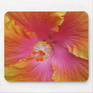 Hibiscus 1 mouse pad