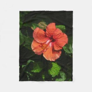 Hibiscus 424 Blanket