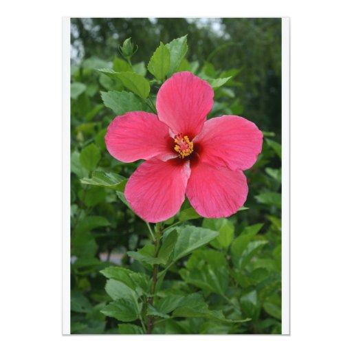 Hibiscus 5x7 Paper Invitation Card