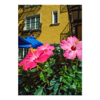 Hibiscus and Wall Photo Art