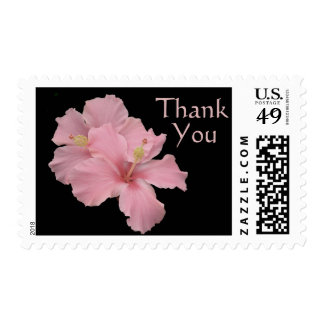 Hibiscus Angel Pink - Thank You Stamp