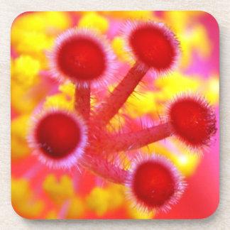 Hibiscus burst beverage coaster