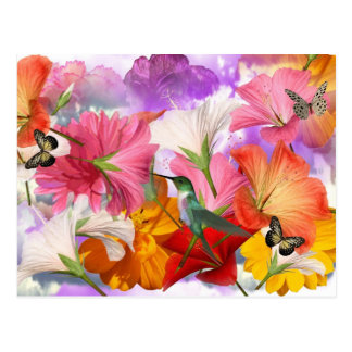 Hibiscus Butterflies Postcard