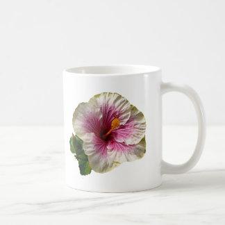 Hibiscus Candy Striper Coffee Mugs