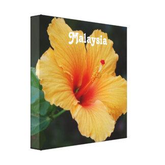 Hibiscus Canvas Prints