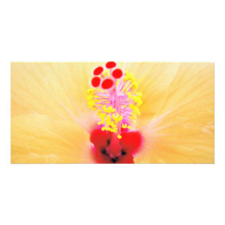 Hibiscus Card