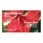 Hibiscus Care Business Card