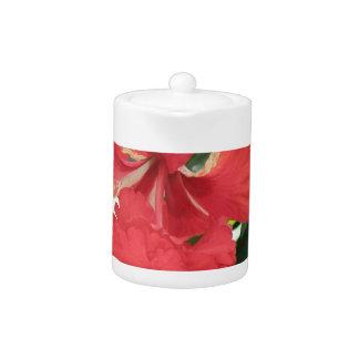 Hibiscus Care Teapot