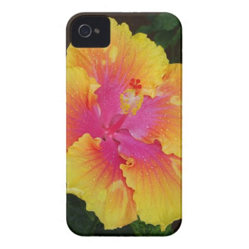 Hibiscus Case-Mate Case iPhone 4 Case-Mate Case