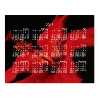 Hibiscus Detail; 2013 Calendar Postcard