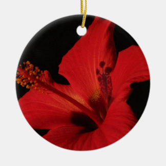 Hibiscus Detail Double-Sided Ceramic Round Christmas Ornament