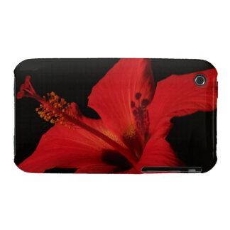 Hibiscus Detail iPhone 3 Case