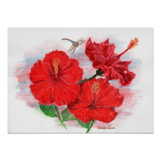 "Hibiscus & Dragonfly 24""x24"" Poster"