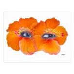 Hibiscus Eyes - Orange Post Card