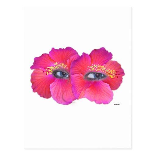 Hibiscus Eyes - Pink Postcard