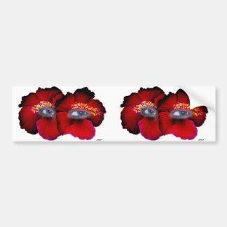 Hibiscus Eyes - Red & Black Bumper Sticker