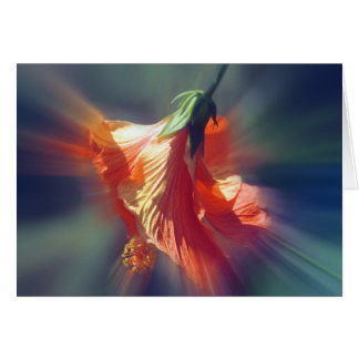 Hibiscus Fan Card