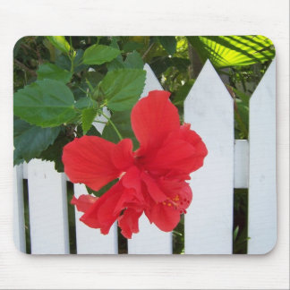Hibiscus & Fence Mouse Pad