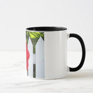 Hibiscus & Fence Mug