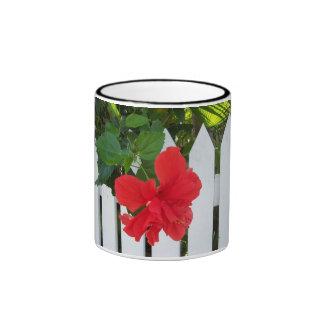 Hibiscus & Fence Ringer Mug