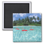 Hibiscus floating on the sea 2 inch square magnet