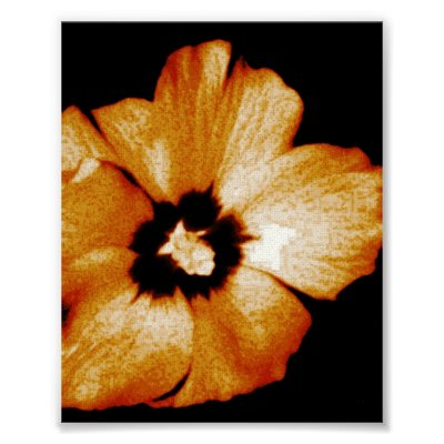 Hibiscus Flower 3 Poster by loudesigns I have this set on the biggest size
