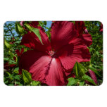 Hibiscus Flower and Blue Sky Summer Nature Photo Magnet