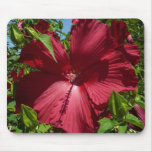Hibiscus Flower and Blue Sky Summer Nature Photo Mouse Pad