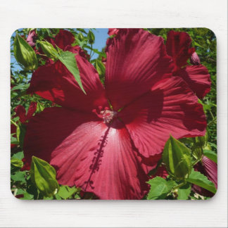 Hibiscus Flower and Blue Sky Tropical Floral Mouse Pad
