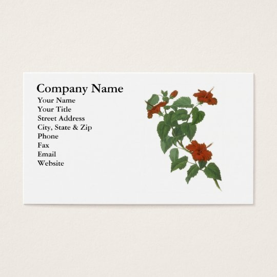 Hibiscus Flower Botanical Drawing Business Card