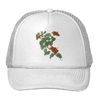 Hibiscus Flower Botanical Drawing Trucker Hat