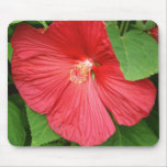 Hibiscus Flower Bright Magenta Floral Mouse Pad