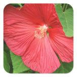 Hibiscus Flower Bright Magenta Floral Square Sticker