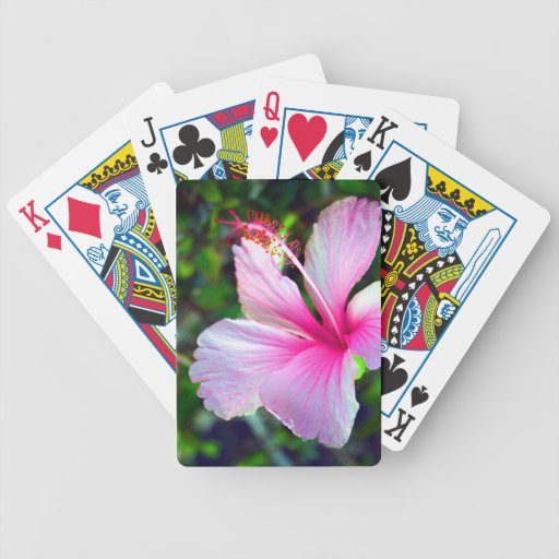 Hibiscus flower bright pink against green bicycle card deck