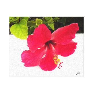 Hibiscus flower canvas