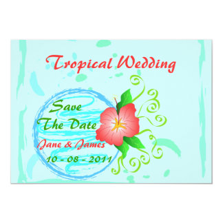 Hibiscus flower - Card