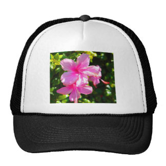 Hibiscus Flower Pink Trucker Hat